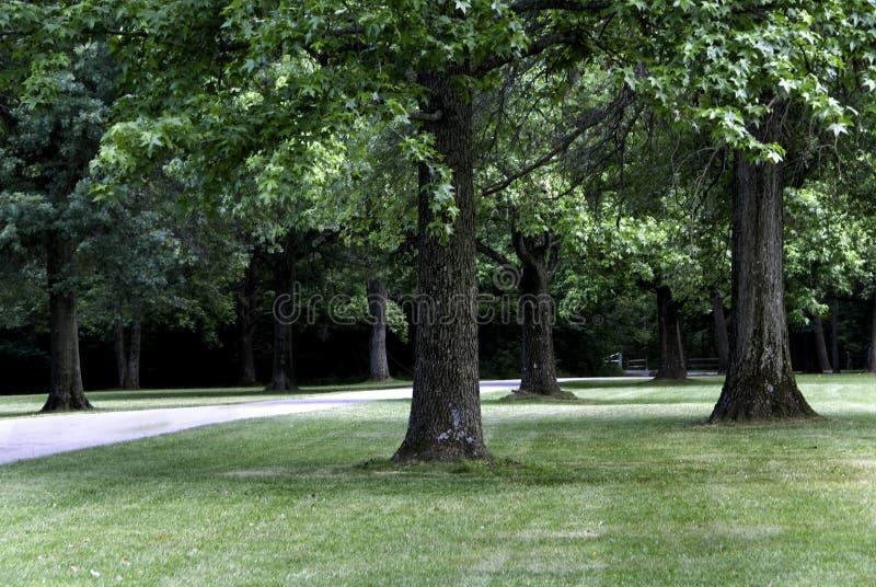 Public Park Royalty Free Stock Images