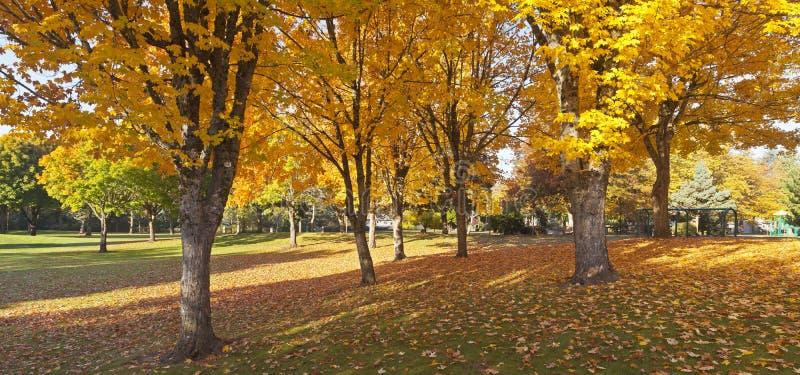Public park Autumn panorama Gresham Oregon. royalty free stock image