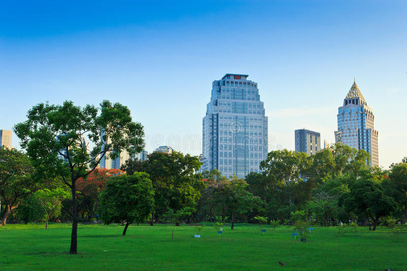 The public park. In the city for relax and exercise. This is green area in the capital royalty free stock photo
