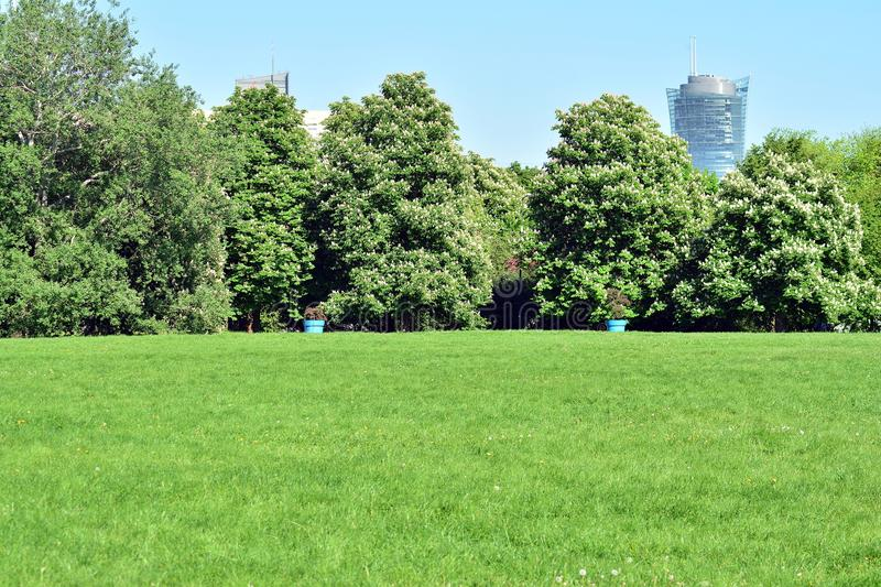 Public park with green grass field royalty free stock photos