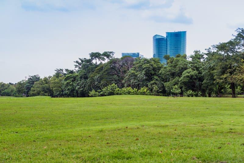Public park. Green nature on public park with rain cloud stock images