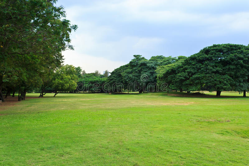 Public park. Green nature on public park with rain cloud stock photos