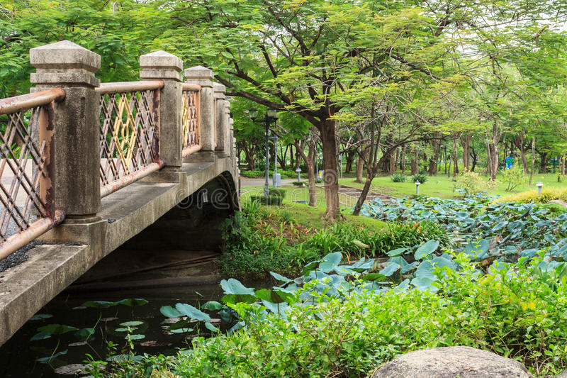 Public park. Or landscape with Bridge royalty free stock photography