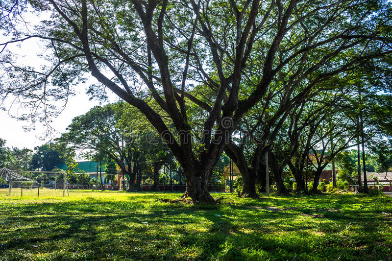 Public playing area. ChiangMai, Thailand. January, 19-2017: Public playing ground in some place surrounded by tropical plants stock photo