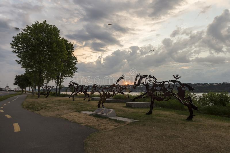 Public sculpture representing a herd of steel-cut horses stock photography