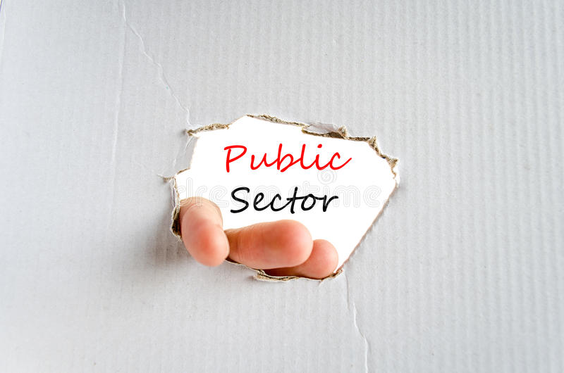 Public sector text concept. Isolated over white background royalty free stock photos