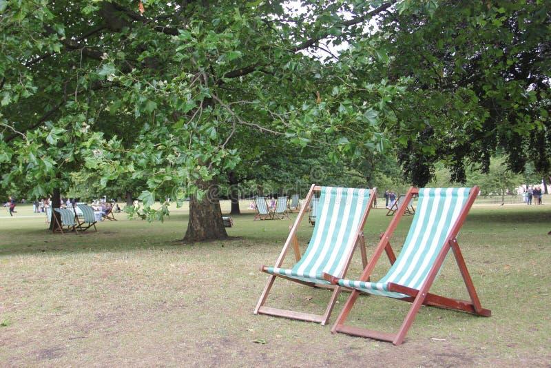 Public Space, Tree, Leisure, Park royalty free stock photos