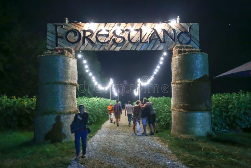 Publiek op Forestland stock afbeeldingen