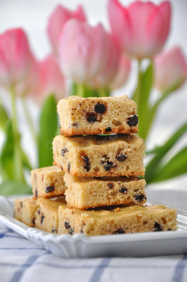 Puce de chocolat Blondies images libres de droits