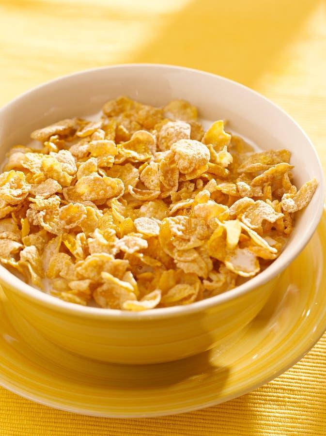 Puchar śniadanie kukurydzani płatki dla śniadania obraz stock