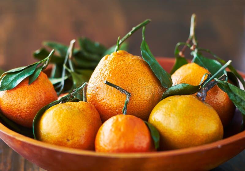 Puchar świeże pomarańcze zamknięte w górę zdjęcia royalty free