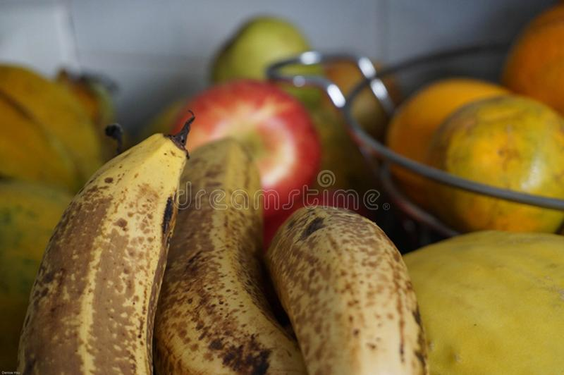 Puchar owoc obraz royalty free