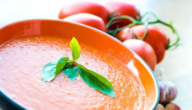 Puchar pomidorowy zupny gaspacho fotografia royalty free
