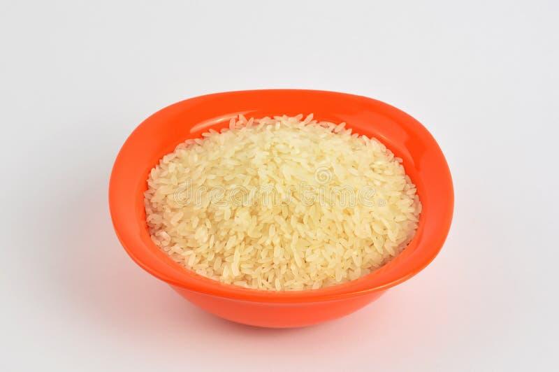 Puchar ryż obraz royalty free