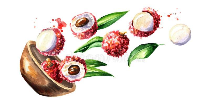 Puchar z dojrzałym lychee Akwareli ręka rysująca horyzontalna ilustracja, odizolowywająca na białym tle ilustracji