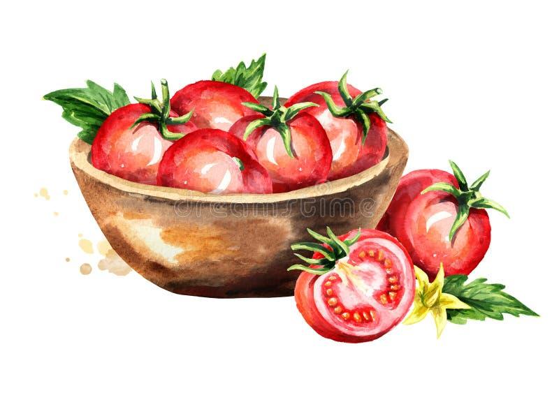 Puchar z dojrzałymi czerwonymi pomidorami Akwareli ręka rysująca ilustracja, odizolowywająca na białym tle royalty ilustracja