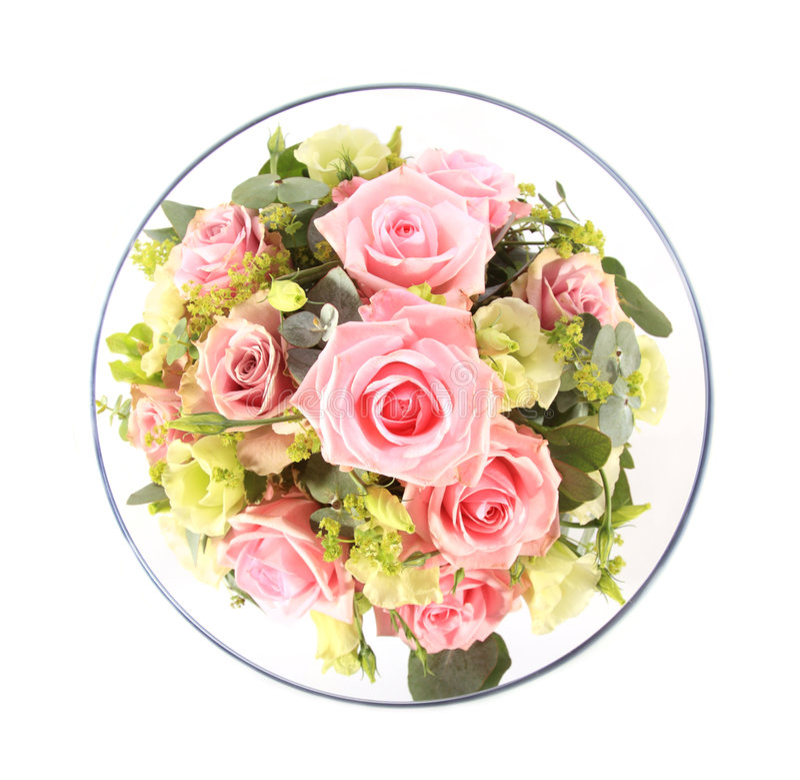 pucharu puszek folować szklane przyglądające różowe róże zdjęcie stock