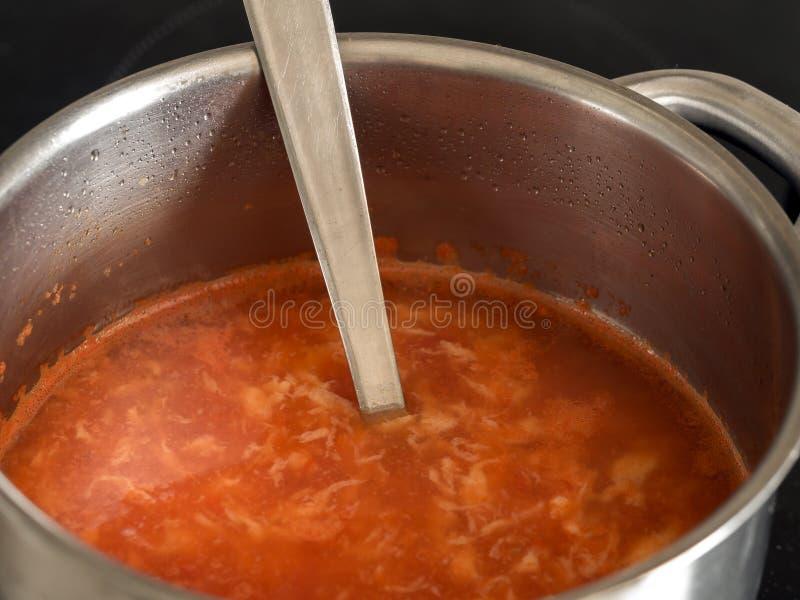 pucharu warzywo zupny pomidorowy zdjęcia royalty free