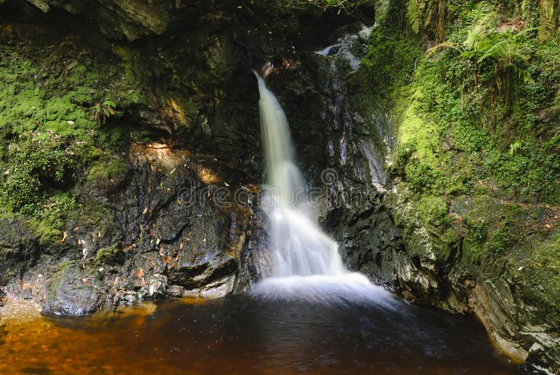 Pucks Glen Waterfall. A waterfall in the magical Pucks Glen walk, in Argyll Forest Park, near Dunoon, on the Cowal peninsula, Argyll and Bute, Scotland. 10 royalty free stock image