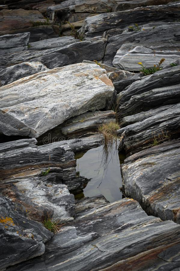 Puddle Amidst Rocks of Maine Shoreline fotografia stock