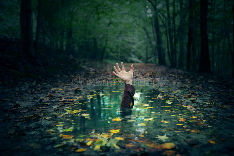 Puddle hand. A hand reaching out of a puddle in the forest royalty free stock photography