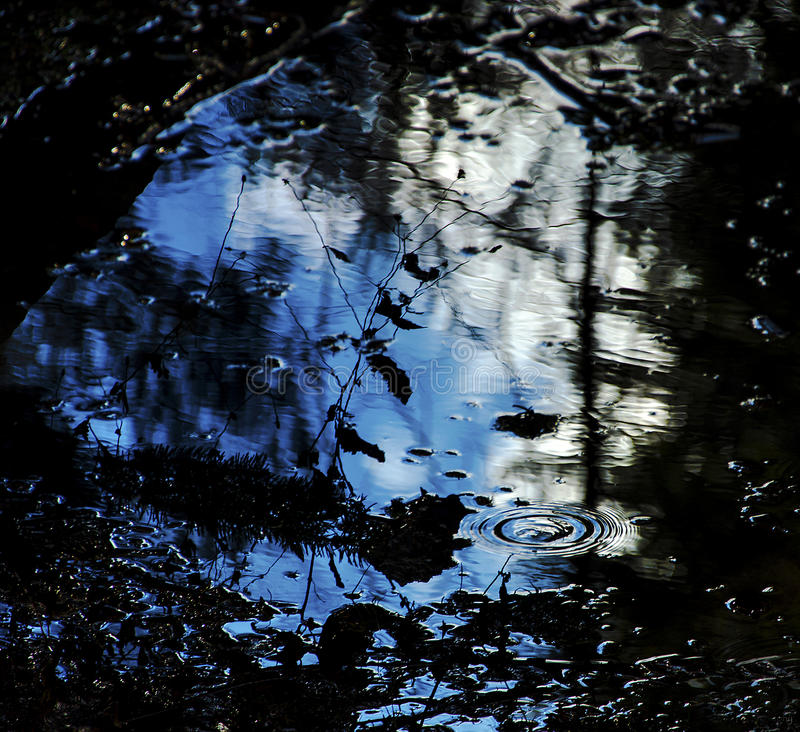 Puddle royalty free stock images
