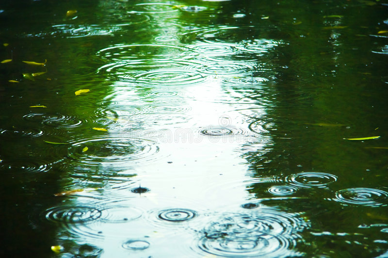 Download Puddle With Splashes And Reflections Stock Image - Image: 5829963