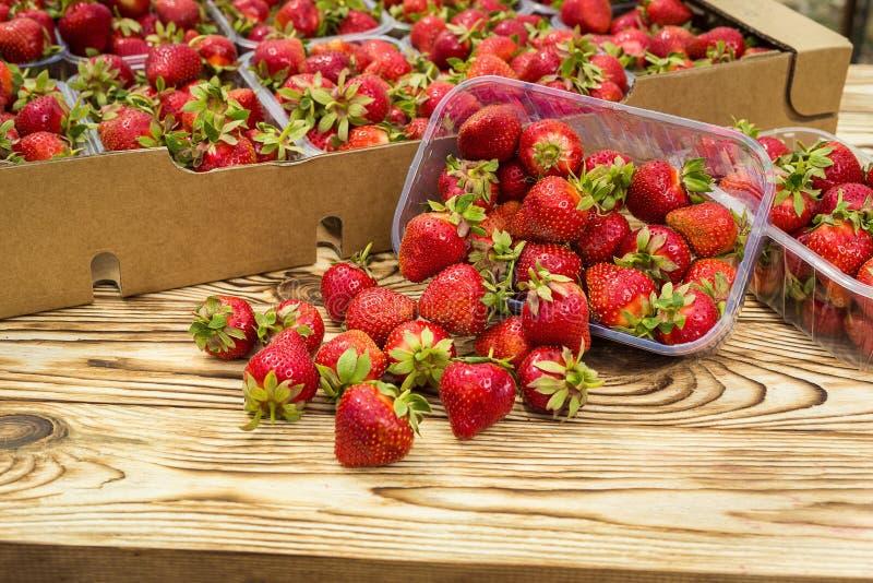 Pudełka truskawki w rolnika rynku Skrzynki pełno fragaria zdjęcie stock