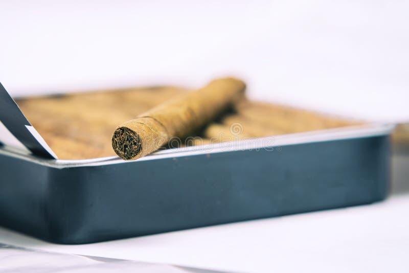 Pudełko cigarillos na białym tle Na pudełku jest jeden cigarillo zdjęcia stock