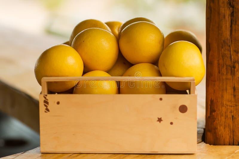 Pudełko grapefruits obraz stock