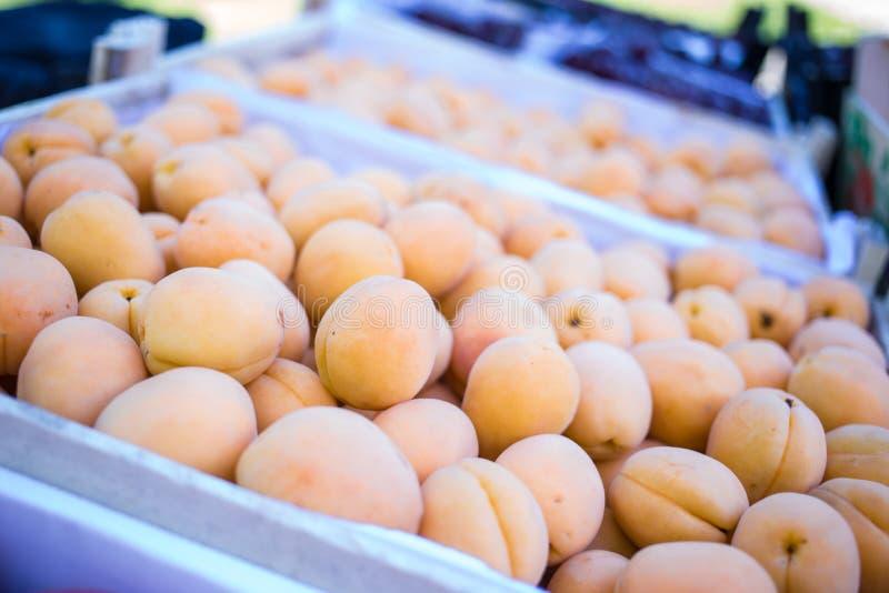 pudełko morele, kontuar sprzedawca owoc i warzywo, farmer&-x27; s rynek zdjęcie royalty free