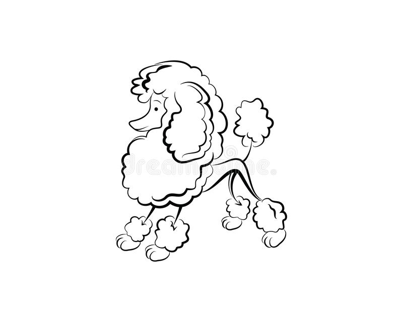 Pudel śliczna psia wektorowa ilustracja ilustracja wektor