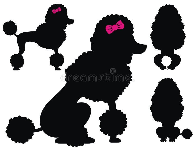 Pudelhundevektorschattenbilder stock abbildung