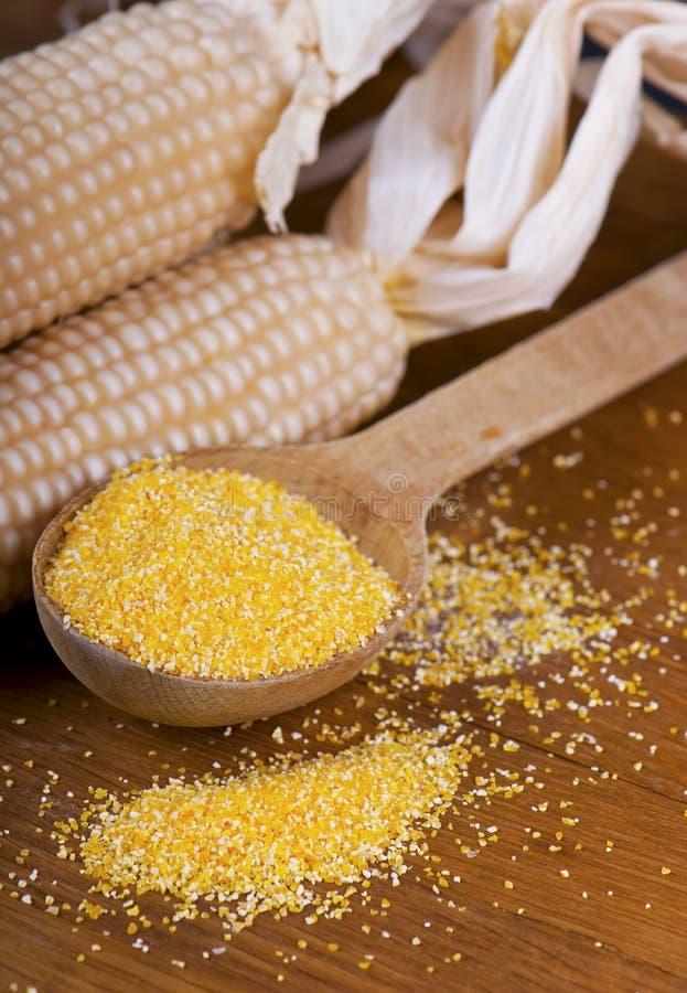 pudra maize royaltyfria bilder