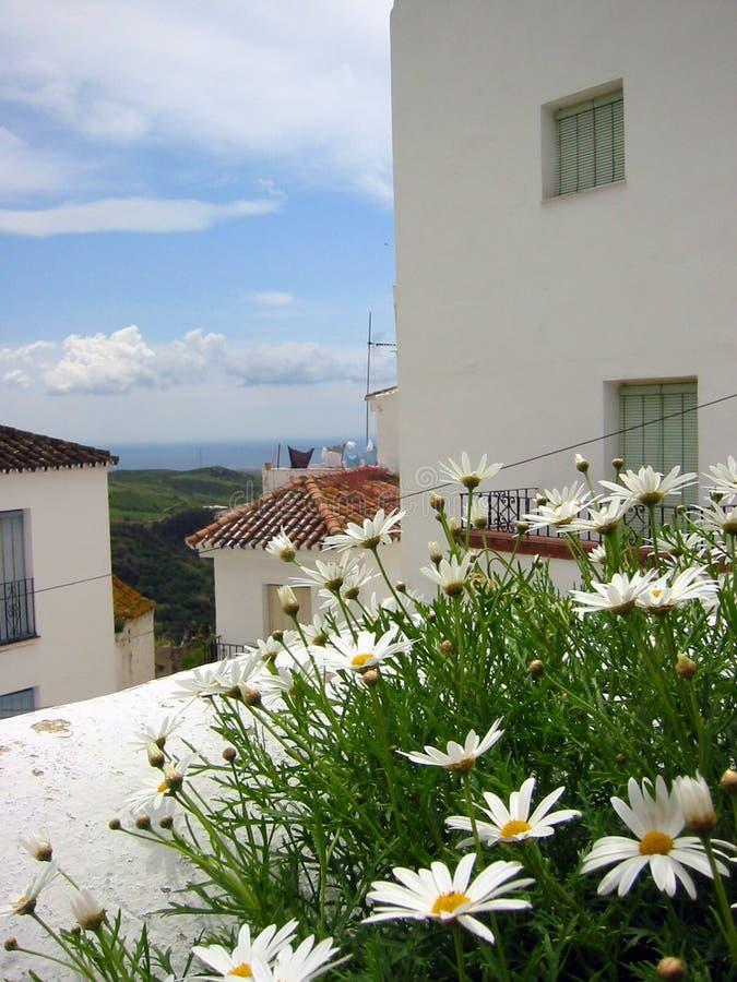 Download Pueblo ισπανικά λουλουδιών Blanco Ανδαλουσίας Στοκ Εικόνες - εικόνα από αρχιτεκτονικής, κανένας: 84662