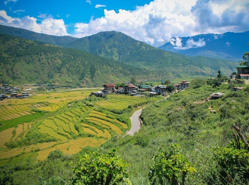 Pueblo butanés y campo colgante en Punakha, Bhután fotos de archivo libres de regalías