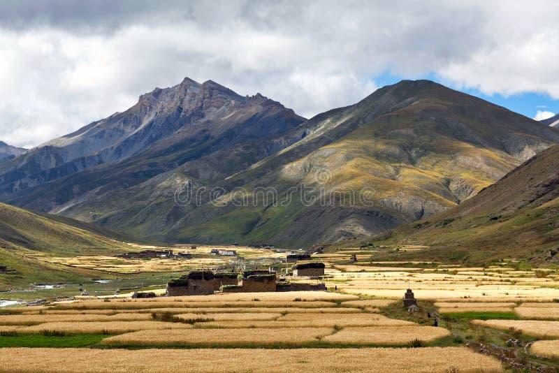 Pueblo de Dho Tarap en Dolpo, Nepa imagen de archivo libre de regalías