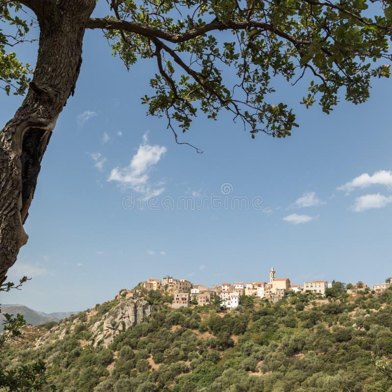 Pueblo de Montemaggiore en la región de Balagne de Córcega fotos de archivo libres de regalías
