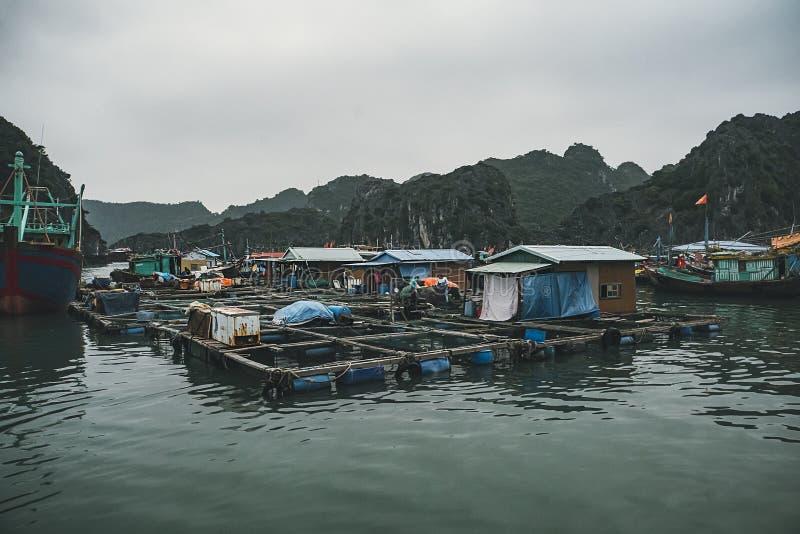 Pueblo flotante de Kuah p?lido en la bah?a de Halong en Vietnam Casas en el agua Costa rocosa foto de archivo libre de regalías