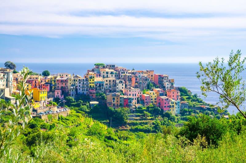 Pueblo italiano típico tradicional de Corniglia con las casas multicoloras coloridas de los edificios en el acantilado y Genoa Gu foto de archivo libre de regalías