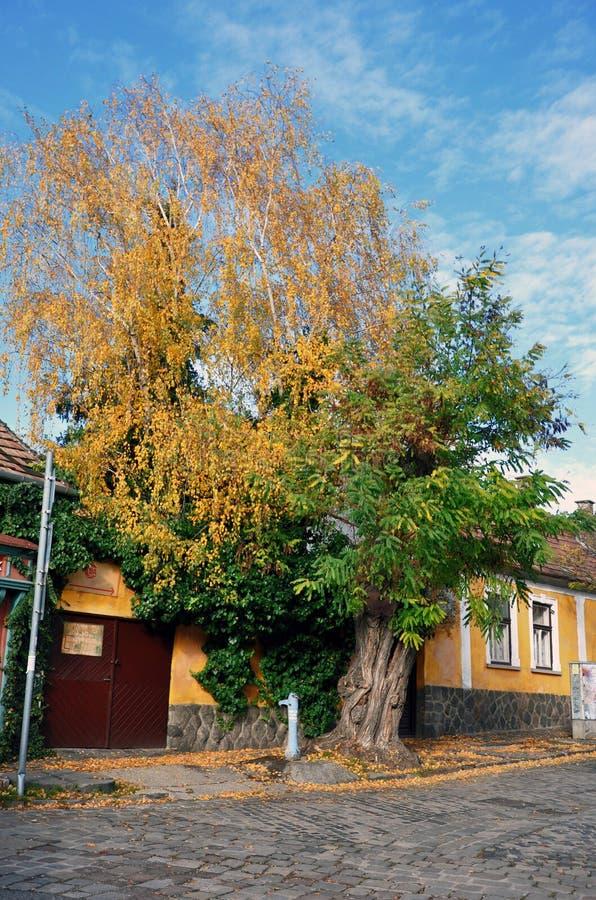 Pueblo Szentendre en Hungría fotos de archivo