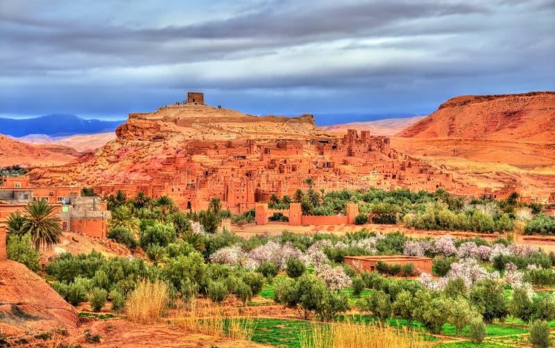 Pueblo y árboles florecientes - Marruecos de Ait Benhaddou fotos de archivo