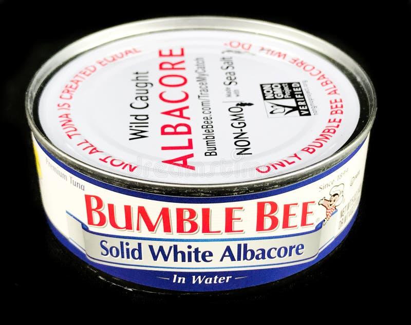Puede de manosear la albacora blanca sólida de la abeja en agua fotos de archivo libres de regalías