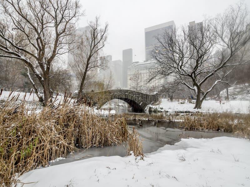 Puente Central Park, New York City de Gapstow fotos de archivo