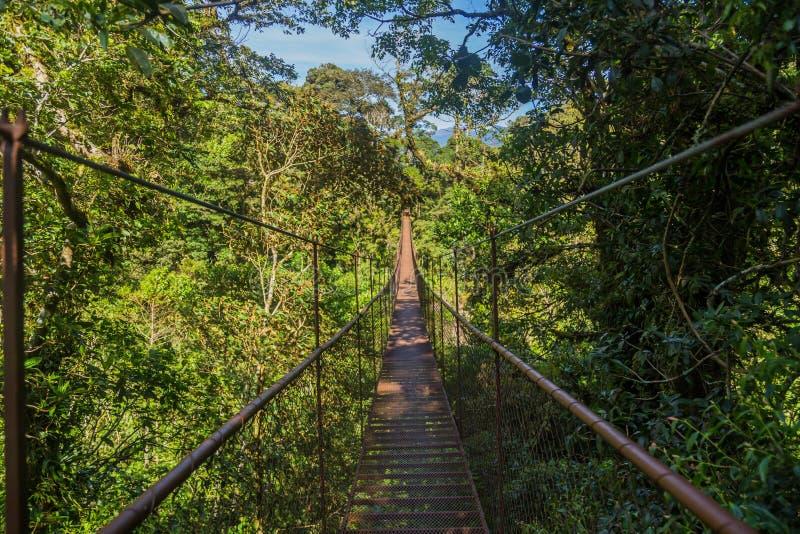 Puente colgado en Panamá imágenes de archivo libres de regalías