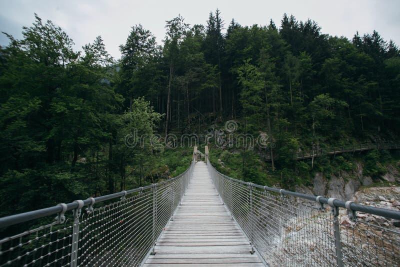 Puente colgante de madera en bosque cambiante de la montaña imágenes de archivo libres de regalías