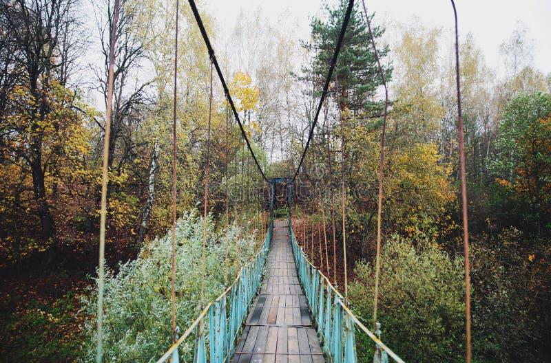 Puente colgante en bosque del otoño imágenes de archivo libres de regalías
