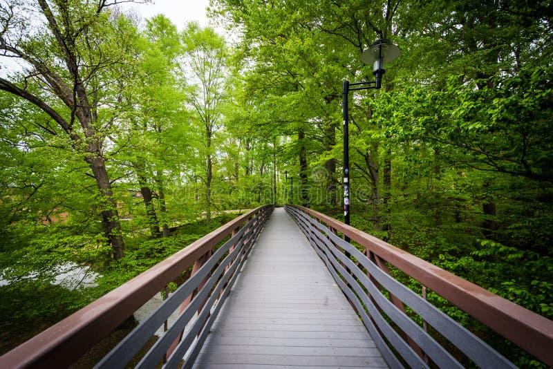 Puente con un área boscosa en la universidad de Towson, en Towson, imagenes de archivo