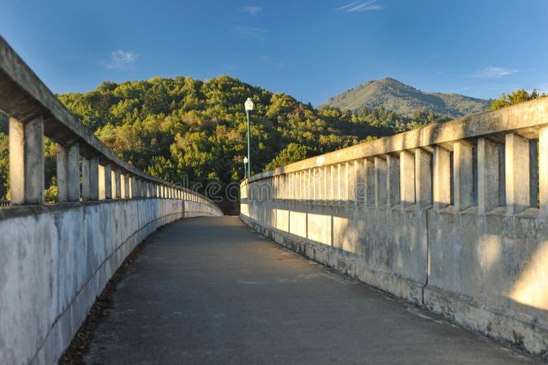 Puente concreto con los polos ligeros sobre el río foto de archivo libre de regalías