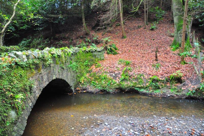 Puente cubierto de musgo sobre un río foto de archivo libre de regalías